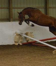bon bon jumpingcrop