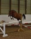 bon bon jumpingcropped