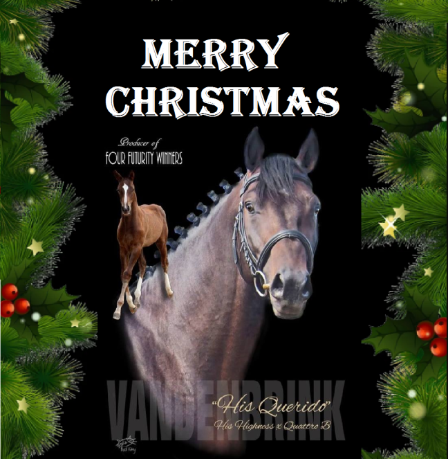 Hans and VandenBrink Warmbloods Christmas Card.png